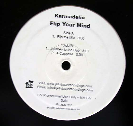 Karmadelic - Flip Your Mind