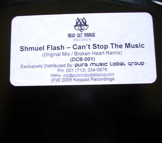 Shmuel Flash - Can't Stop The Musik
