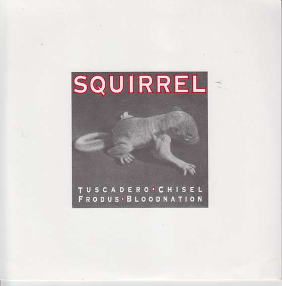 V/A - Squirrel